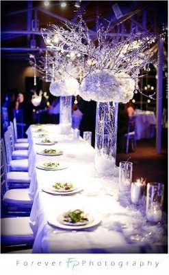 Winter Wedding Decorations on Icey Winter Wedding    Smart Ideas For Your Events